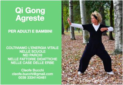 Qi Gong Agreste